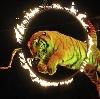 Цирки в Уфе